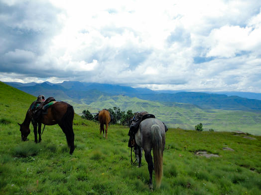 On Horseback Across African Borders - a 3 Day Long Trail Ride from South Africa to Lesotho